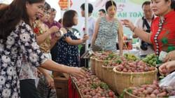Bắt đầu tuần lễ mận và nông sản an toàn Sơn La tại Hà Nội