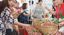 Hà Nội: Khai mạc tuần lễ mận và nông sản an toàn Sơn La