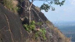 Gia Lai: Kinh hoàng phát hiện thi thể đang phân hủy trên vách đá