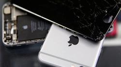 Apple bị khách Trung Quốc lừa bảo hành bằng 1.500 chiếc iPhone nhái