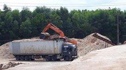 Quảng Trị: Nhà máy gỗ bất chấp pháp luật, hoạt động không phép
