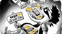 Huế: Thêm hàng loạt người tố bị chủ hụi chiếm đoạt tiền