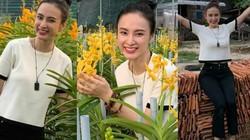 """Sao Việt ngày 30/5: Angela Phương Trinh cần gì hở bạo vẫn xinh đẹp """"đốn tim"""""""