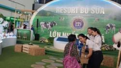 Ngành sữa Việt Nam tìm kiếm cơ hội hội nhập và phát triển bền vững