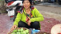 Xoài Yên Châu: Đầu năm buồn rười rượi, giữa năm vui trở lại