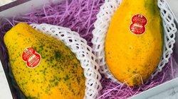 Đu đủ Việt bày la liệt ngoài chợ, hàng nhập ngoại cả triệu đồng/quả