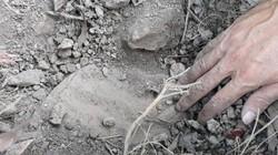 Vụ nhà máy rác chôn xác thai nhi: Xử lý xác thai nhi chết ra sao?