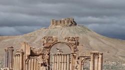 Đại chiến Syria: IS đang 'hồi sinh' ở cô dâu sa mạc Palmyra