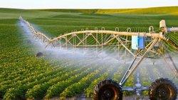 Ngày càng nhiều 'đại gia' bất động sản bắt tay vào làm nông nghiệp
