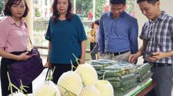 Hà Nội: Nhiều đơn vị tham gia gỡ khó kết nối cung - cầu nông sản