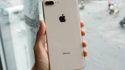 Dùng iPhone 8 Plus, hãy làm ngay điều này nếu muốn chụp đẹp