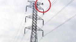 """Hãi hùng thợ điện """"đu xà thể dục"""" trên cột điện cao thế"""