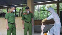 Kinh khủng: Lạng Sơn bắt 6 tạ nầm lợn nhập lậu ướp hóa chất bốc mùi