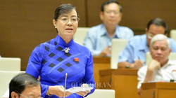 Bà Quyết Tâm: Quốc hội phải có chính sách để công nhân làm ít giờ mà thu nhập tăng lên