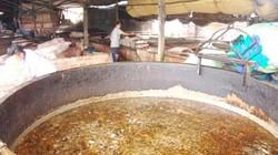 TP.HCM: Mặc  kệ dịch bùng phát, dân vẫn nuôi heo bằng thức ăn thừa