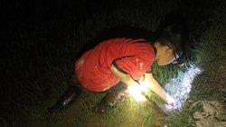 Nắng cháy da thịt: Rọi đèn, lội bùn theo chân 'thợ săn' cua đồng đêm