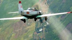 Chi tiết về máy bay Yak-52 - loại vừa bị rơi ở Khánh Hòa