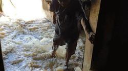 Lâm Đồng: Lũ lớn nhấn chìm nhà dân trong biển nước