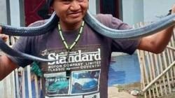 Indonesia: Tắm cho trăn cưng, chủ bất ngờ bị siết đến chết