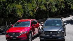 """Mazda CX-8: """"Tân binh"""" đáng gờm trong phân khúc SUV 7 chỗ"""