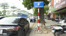 """Hà Nội: Ai """"thâu tóm"""" lòng đường phố Trần Vỹ thành điểm trông giữ xe?"""