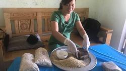 Khoai chà, món ngon dân dã, đậm vị quê của người Quảng Nam