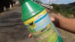 Vụ phun thuốc diệt cỏ ven QL24: Công ty nói nhân viên làm liều