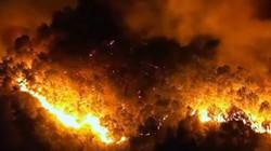 Đám cháy rừng ở Hà Tĩnh bùng phát trở lại