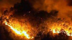 Cháy rừng dữ dội tại Hà Tĩnh: Tạm giữ một người nghi liên quan
