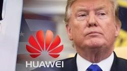 G20: Trump bất ngờ nhượng bộ Trung Quốc vụ Huawei