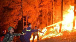 Cháy rừng Hà Tĩnh: Bài thơ của cô giáo dạy văn gây xúc động cộng đồng mạng