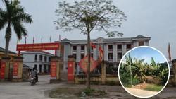 """UBND tỉnh Hưng Yên chỉ đạo """"nóng"""" vụ việc tại xã Phạm Ngũ Lão"""
