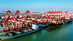 Bộ Công Thương yêu cầu rà soát các loại thuế phí XNK tại Hải Phòng