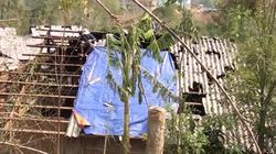 Mưa đá, giông lốc dị thường gây chết người ở Sơn La