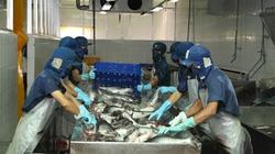 Cần Thơ: Thiếu nhiều công nhân chế biến thủy sản