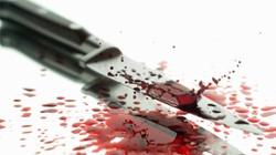 Hung thủ 2 vụ giết người ra đầu thú