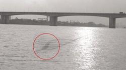 """""""Quái vật"""" 40 mét ở sông Hồng chỉ là trò bịp"""