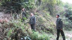 Giao rừng đến từng hộ dân để giữ rừng