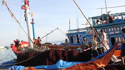 Ngư dân đầu tư công nghệ đánh bắt