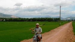 An Nhơn (Bình Định): Nông dân hăng hái hiến đất