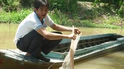 Cá nóc mít là thủ phạm cắn trẻ em tắm sông