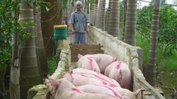Ngân hàng vẫn làm khó người chăn nuôi