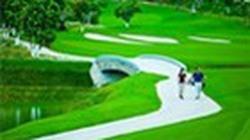 Ăn đất sân golf