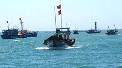 Bình Thuận: Ngư dân liên kết bám biển