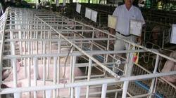 Chăn nuôi thủy sản: DN ngoại độc chiếm
