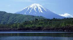Khu rừng chết chóc ở chân núi Phú Sĩ