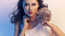 Thí sinh Next Top Model làm duyên bên... mèo