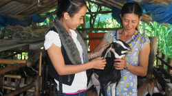 Chú trọng giúp nông dân vốn, kiến thức
