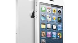 Sau 24 giờ, iPhone 5 có 2 triệu đơn đặt hàng