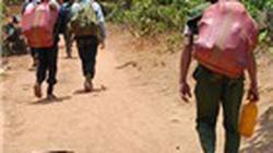 Khánh Hòa: Lập chốt ngăn người tìm trầm